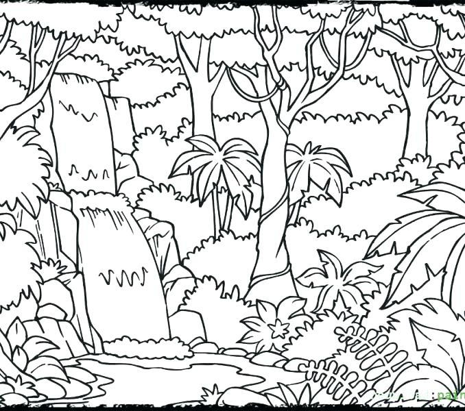 678x600 Jungle Coloring Page Jungle Coloring Page Jungle Printable