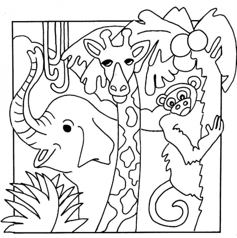 768x770 Jungle Animal Coloring Pages Good Jungle Animals Coloring Pages