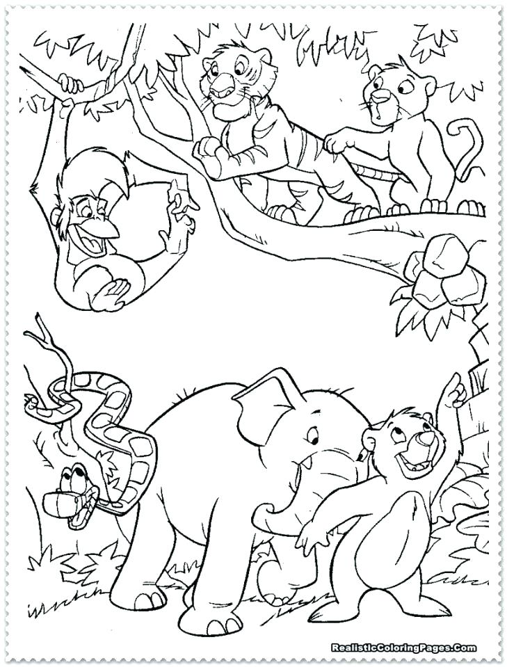 729x959 Jungle Animal Coloring Pages