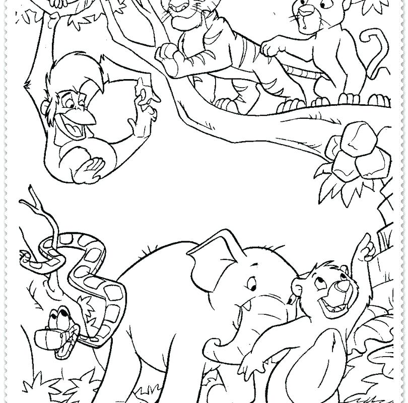 810x800 Jungle Coloring Pages Printable
