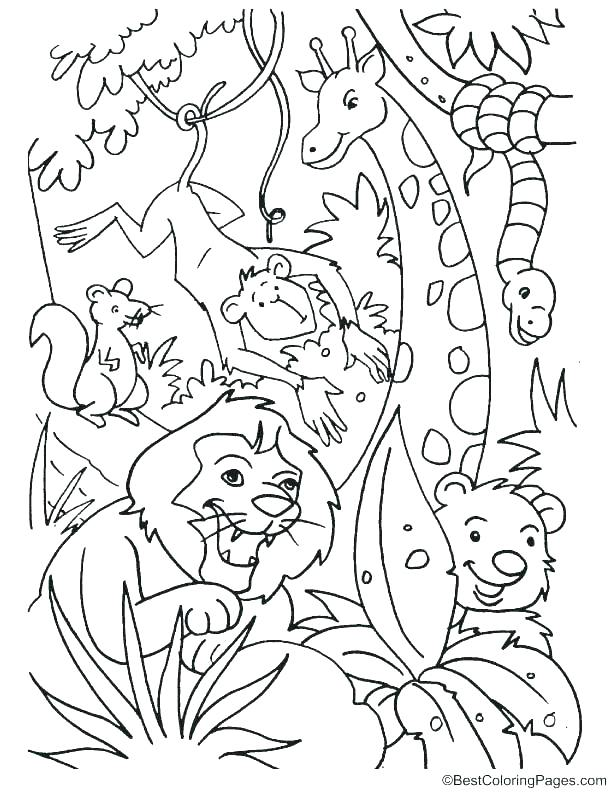 612x792 Jungle Coloring Pages Printable Vanda