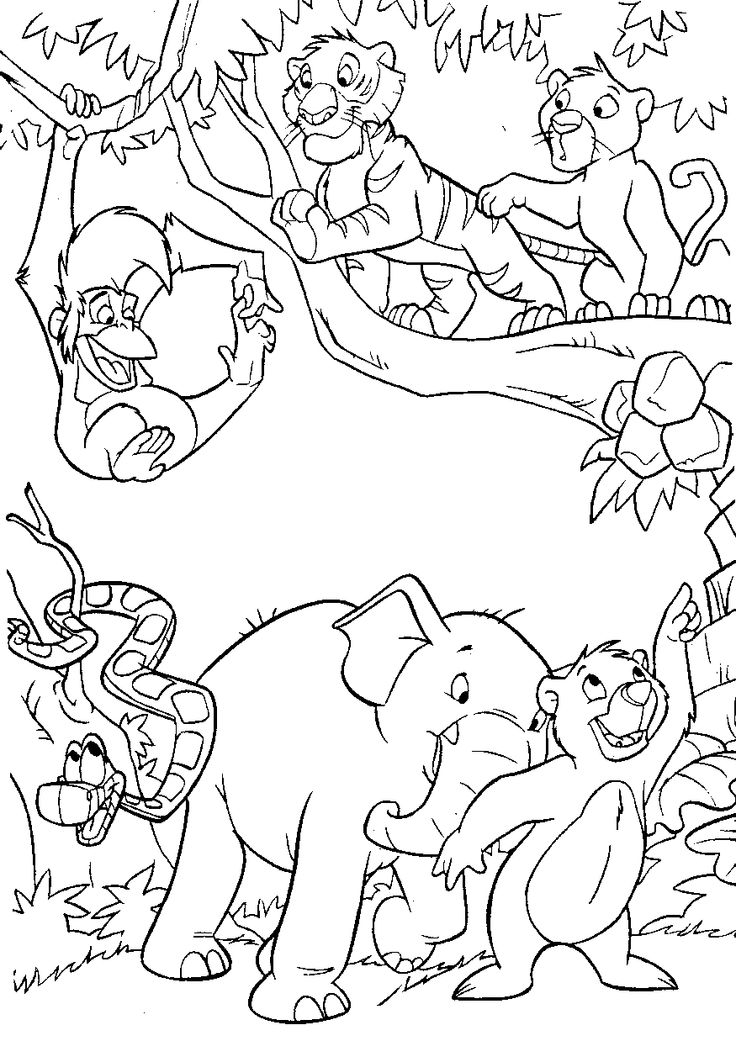 736x1041 Coloring Pages Jungle Coloring Book