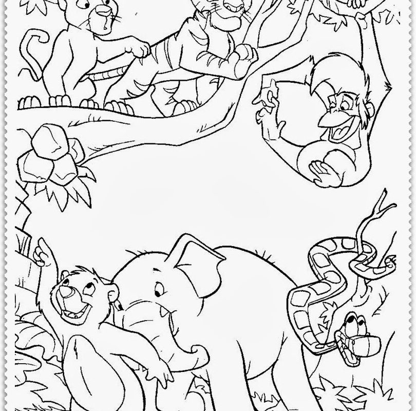 810x800 Jungle Coloring Book Pages More To Color For Adults Printable