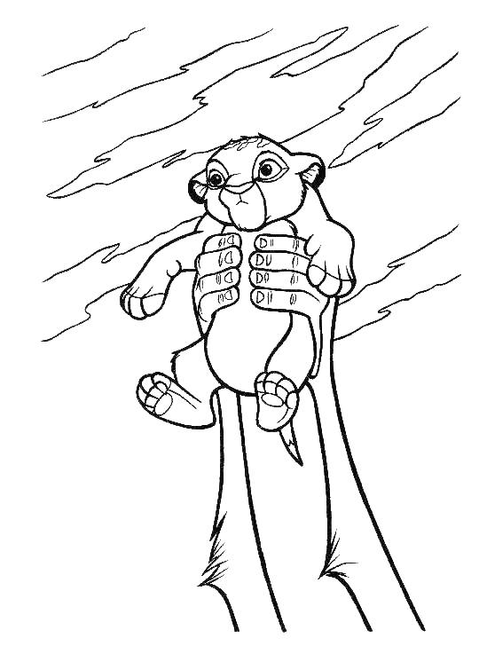 540x728 The Lion King Coloring Page Coloring Printables