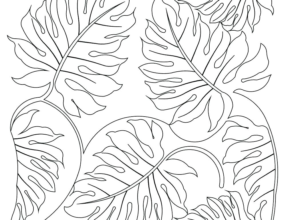 Jungle Leaves Coloring Pages At Getdrawings Free For Personal