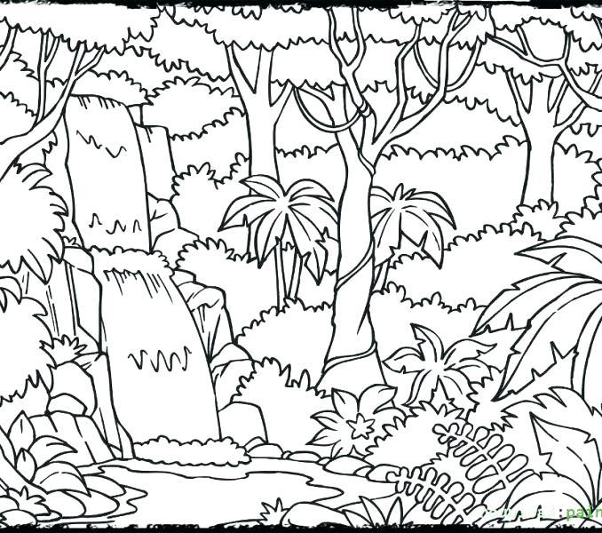 678x600 Jungle Coloring Page Jungle Coloring Page Jungle Printable