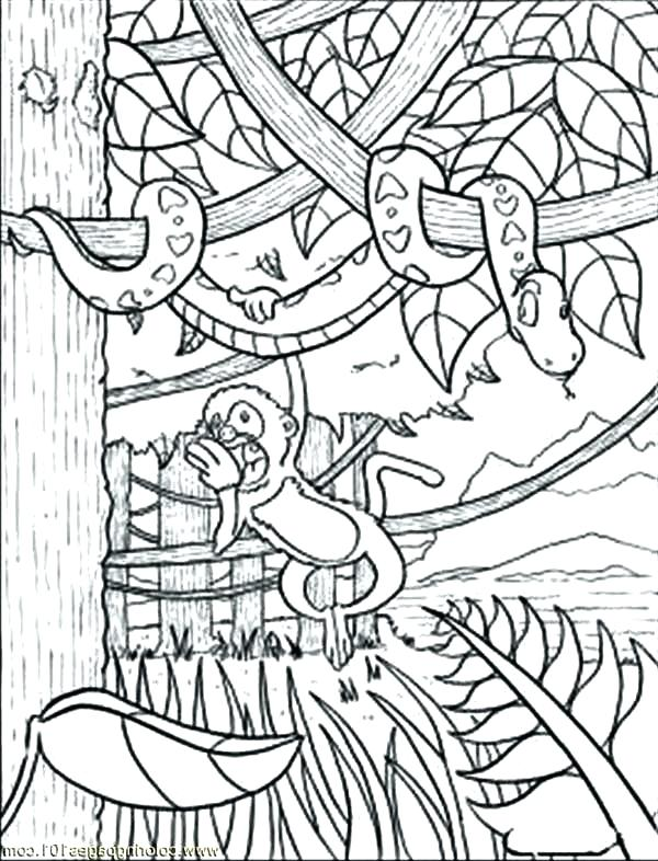600x786 Jungle Animal Coloring Pages Jungle Animal Coloring Pages Jungle
