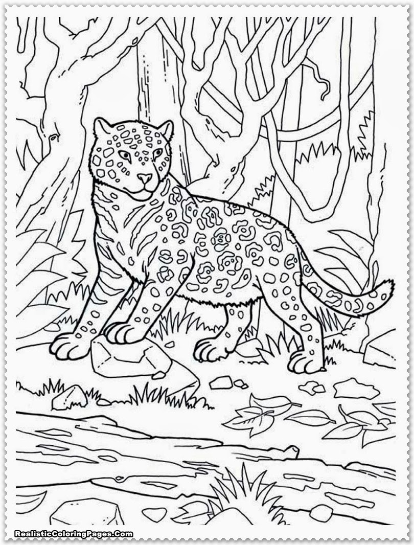 810x1066 Jungle Scene Coloring Pages