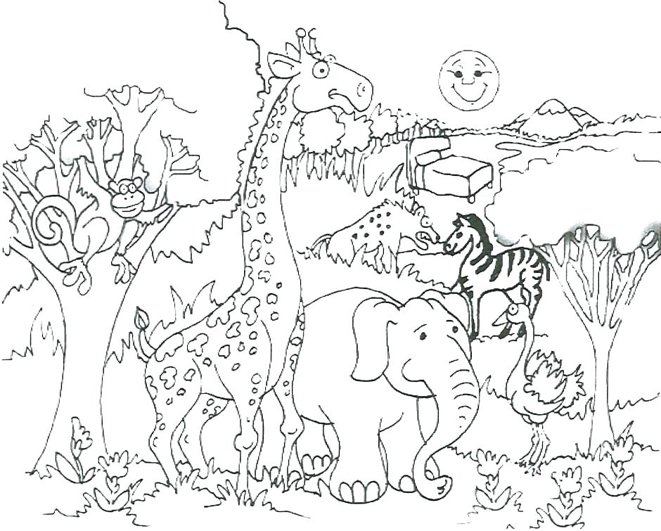 940x755 Jungle Coloring Pages Printable Jungle Animals Coloring Pages