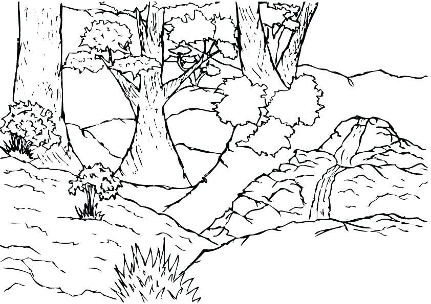 842x595 Jungle Coloring Sheets Jungle Scene Coloring Page Best Shots