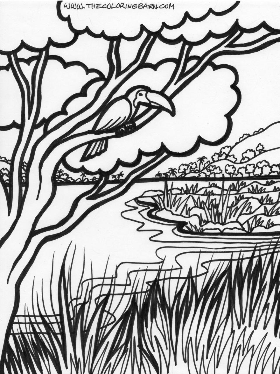 960x1280 Jungle Trees Coloring Pages Coloring Page For Kids Kids Coloring