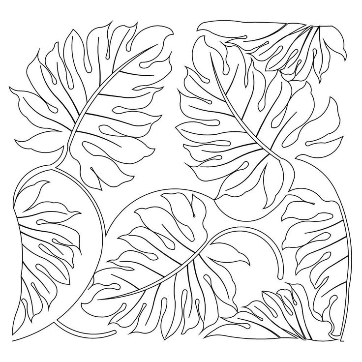 736x736 Jungle Tree Leaves Coloring Pages