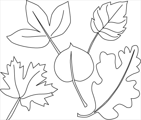 600x510 Jungle Coloring Pages
