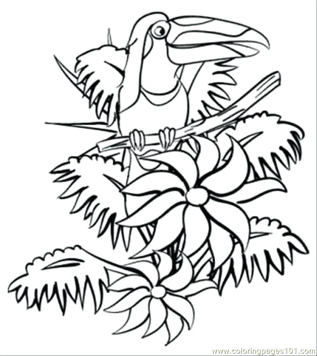 650x731 The Jungle Book Coloring Pages Jungle Book Coloring Pages To Print