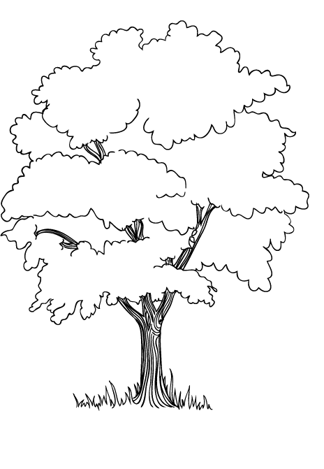 464x671 The Trees In The Jungle Coloring Pages Embroidery Stuff