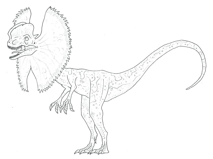 900x672 Velociraptor Coloring Pages Coloring Page Coloring Page Coloring