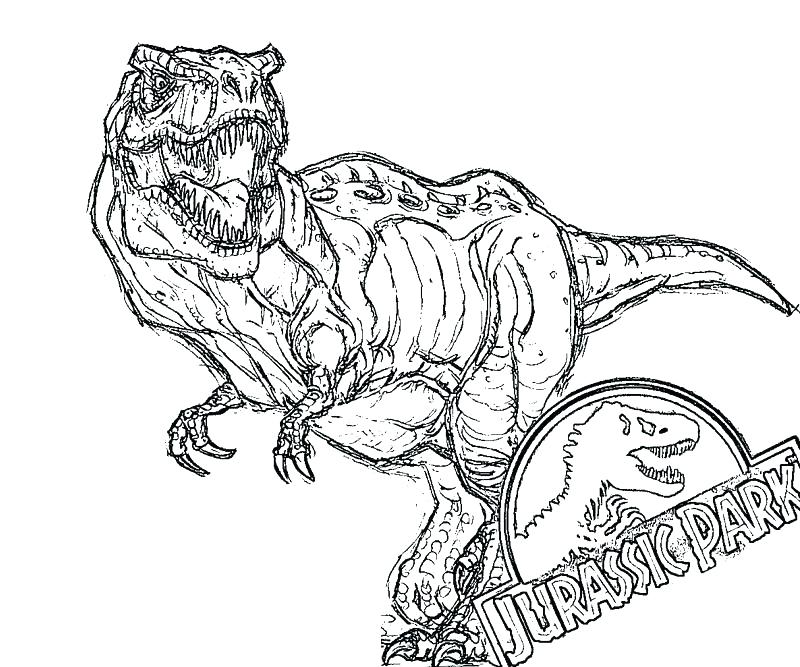 800x667 Trex Coloring Pages T Coloring Pages Packed With Park T Coloring