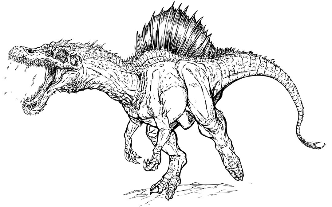 1080x674 Jurassic Park Coloring Pages Jurassic Park T Rex Coloring Page