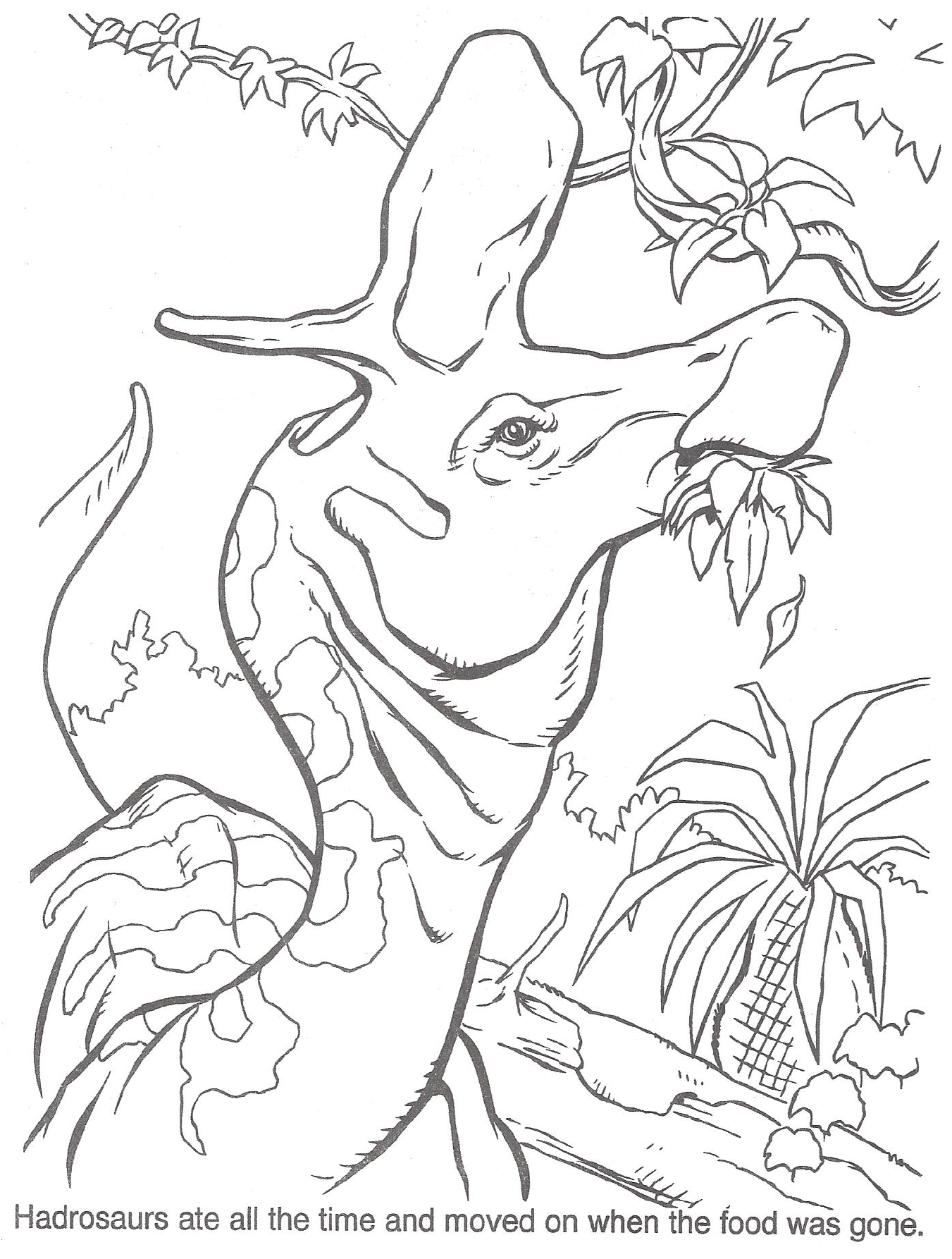 1351x1786 Jurassic Park Raptor Coloring Pages Gallery