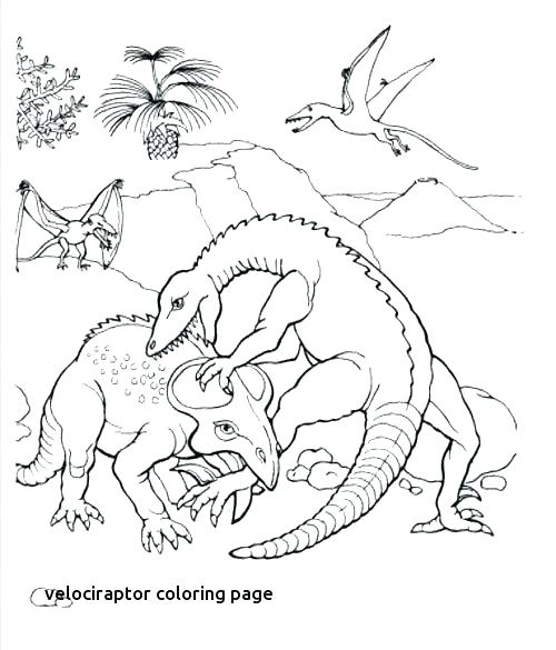 500x585 Velociraptor Coloring Pages Coloring Page Best Dinosaur Images