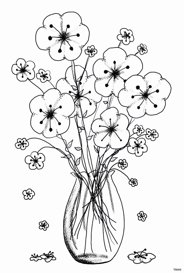 736x1088 Best Coloring Pages For Adults New Fresh Cool Kansas Coloring Page