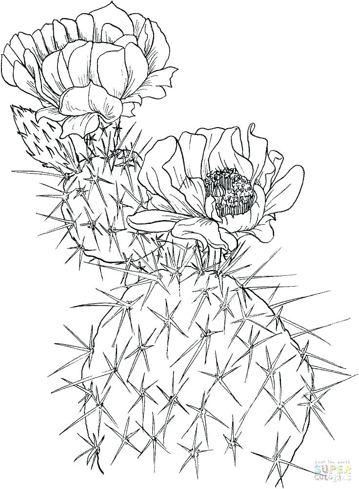 736x1000 Gotenks Super Saiyan Coloring Pages Coloring Pages Coloring