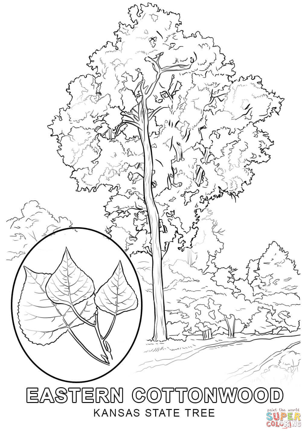 Kansas Day Coloring Pages at GetDrawings.com   Free for ...