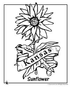 236x305 Kansas Day Coloring Pages With Traceable Words {free} Kansas Day
