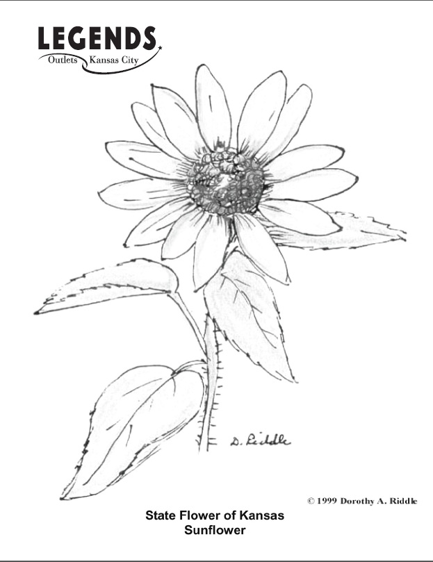 623x809 Best Photos Of Kansas State Symbols Coloring Pages