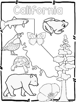 263x350 Usa State Symbols Coloring Sheets