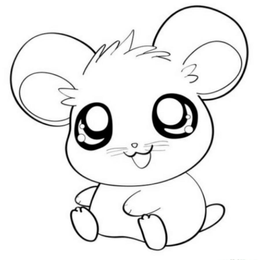 900x900 New Cutekawaii Animal Coloring Pages Design Printable Sheet