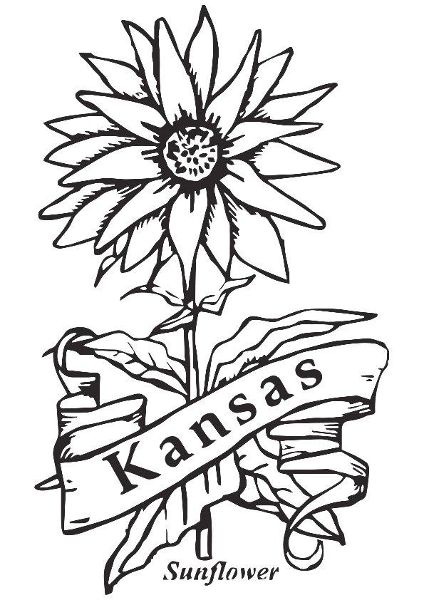 595x842 Kansas Coloring Sheet