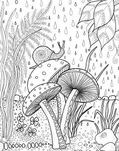 237x301 Forest Coloring Pages