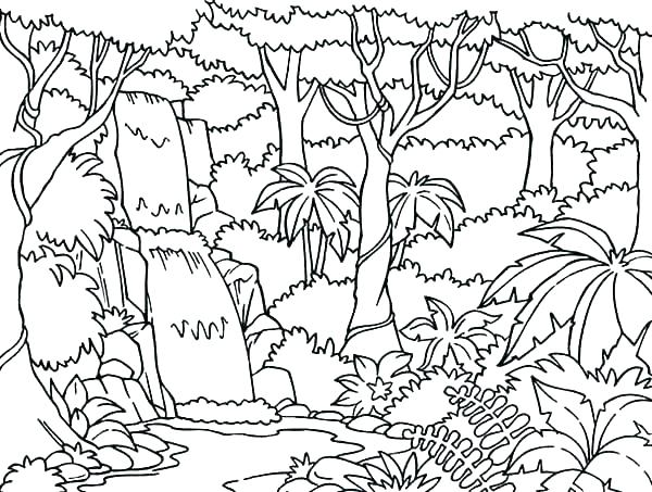 600x453 Forest Coloring Pages Coloring Forest Forest Coloring Pages