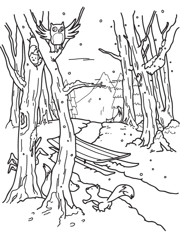 600x776 Attractive Forest Coloring Page Images