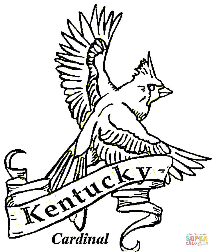 750x882 Kentucky Symbols Coloring Pages Kentucky State Symbols Coloring