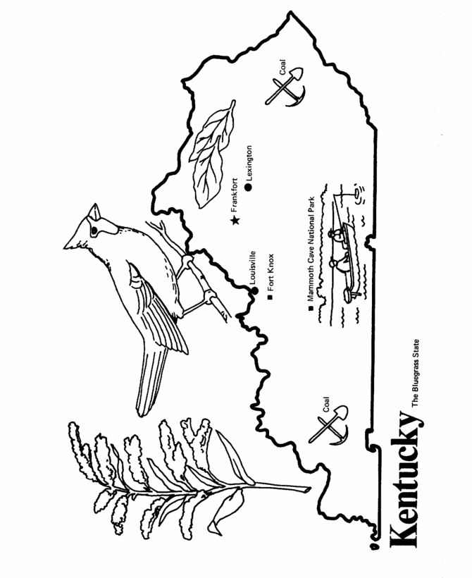 670x820 Kentucky State Flag Coloring Page