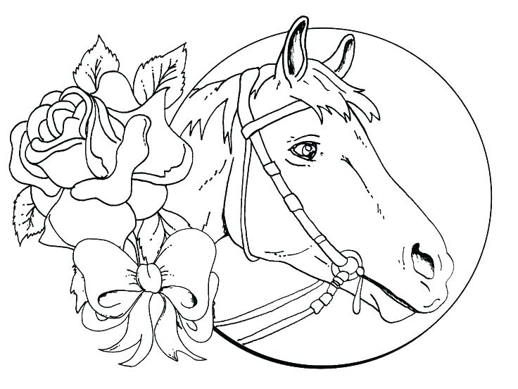 736x552 Breyer Coloring Pages Coloring Pages Horse For Girls And Free