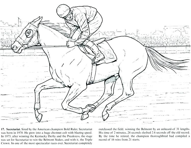750x581 Jumping Horse Coloring Pages Free Horse Jumping Coloring Pages