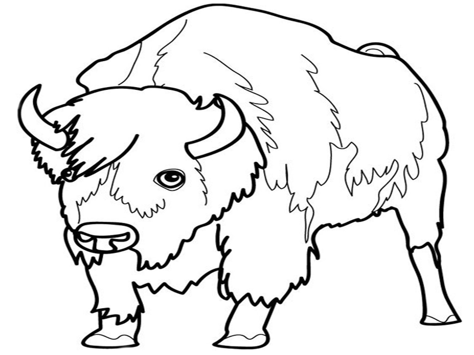 1600x1200 Animal Coloring Pages For Kids