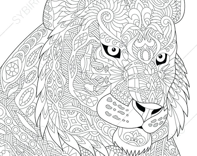 680x540 Wildcat Coloring Page Wildcat Coloring Sheets Coloring Page