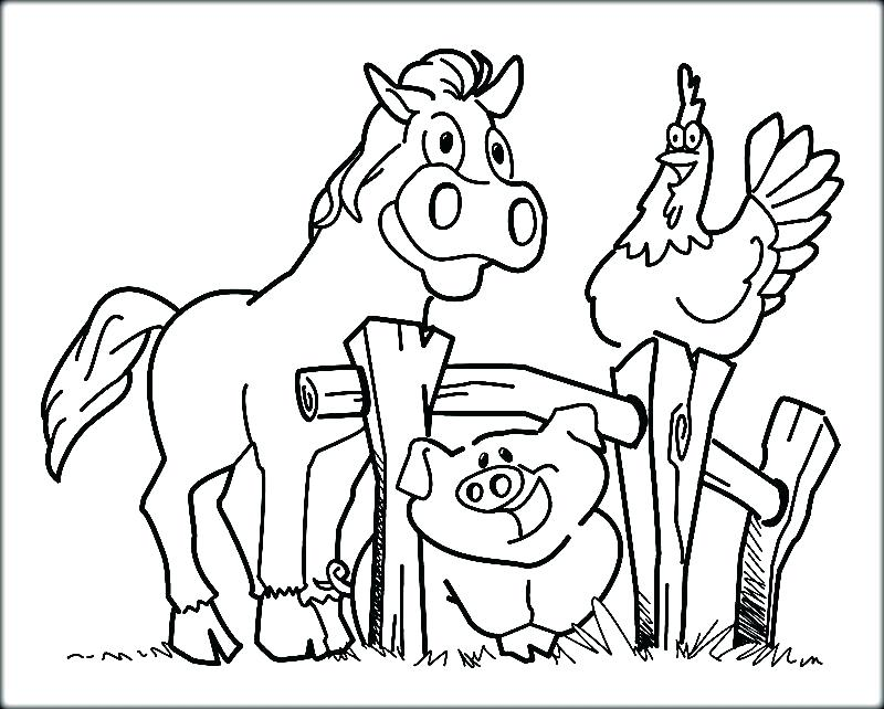 800x642 Farm Color Pages Barnyard Animals Coloring Pages Farm Animals