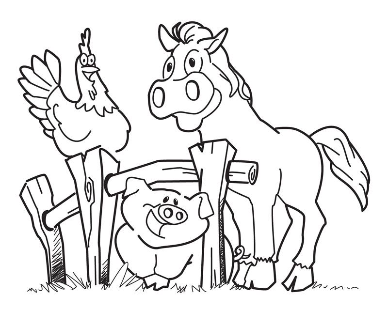 800x642 Free Printable Farm Animal Coloring Pages For Kids Farming