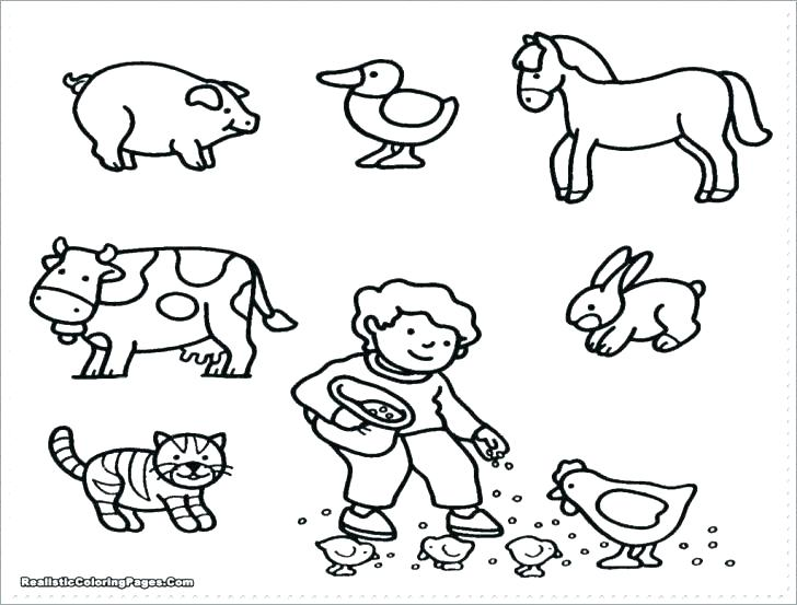 728x553 Baby Farm Animal Coloring Pages Farm Animal Coloring Page Baby