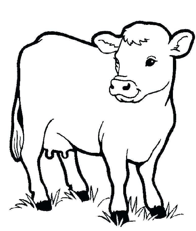 773x910 Cow Coloring Page Preschool Animal Coloring Pages Little Cow