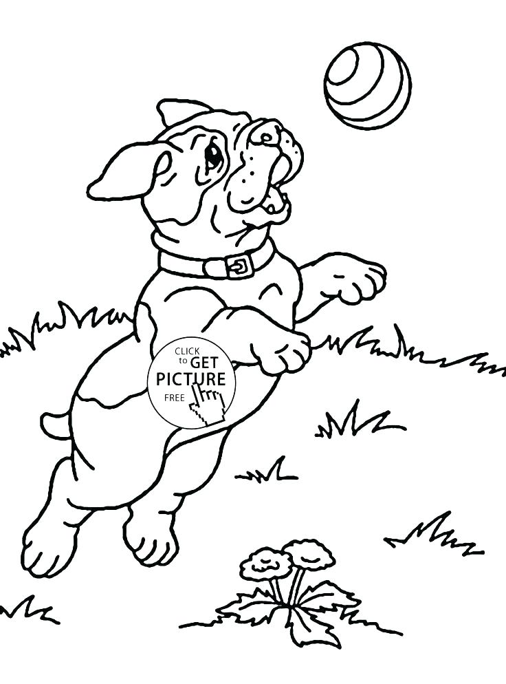 736x994 Free Animal Coloring Pages Puppy Coloring Pages Free Cute Coloring