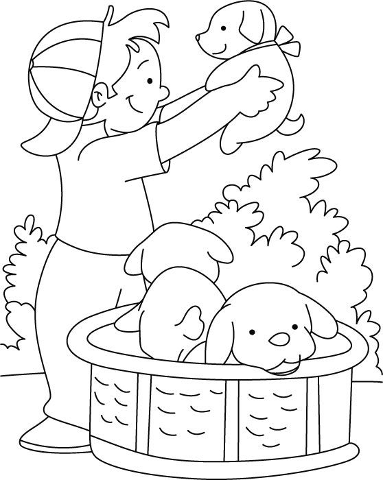 558x700 Boy Playing With Puppy Coloring Page De Colorat