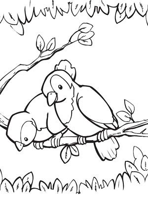 300x400 Printable Spring Coloring Pages Spring, Bird And Adult Coloring
