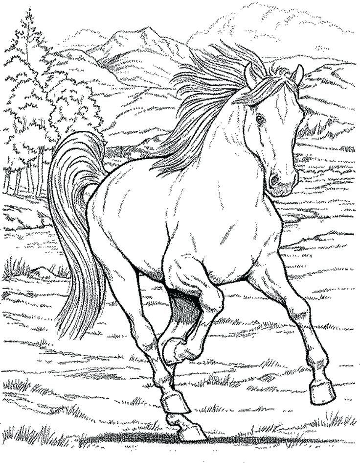 736x945 Horse Coloring Page Horse Coloring Pages For Girls Printable Kids