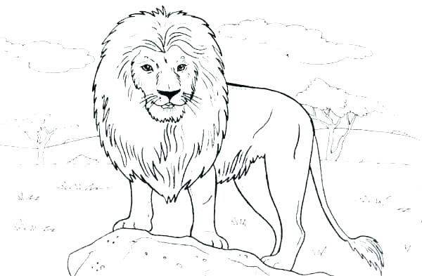 600x393 Dinosaur King Coloring Pages Page Lion Standing On A Rock Color Ki